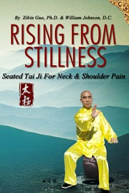 seated tai chi for neck and shoulder pain  maryland wellness